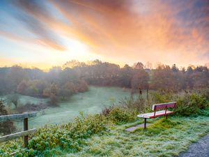Frosty morning over Leasowes Park, in Halesowen. Picture: Nile Rickard Photography