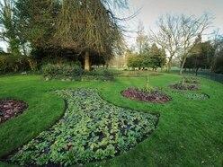 Grass cutting to restart in Sandwell parks