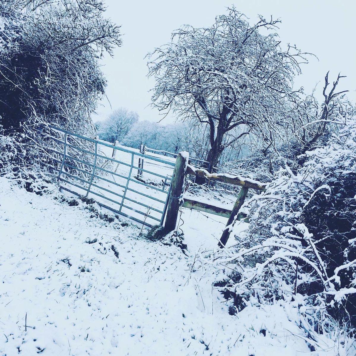 Snow in Shareshill and Little Saredon taken by Karen Hilditch