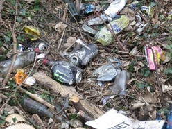 One person take to court in Sandwell as offenders ignore litter fines