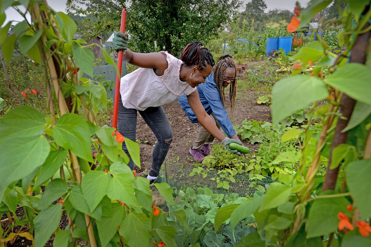 Blessing and Florence are two of six women who have tended to the allotments and made them vibrant places