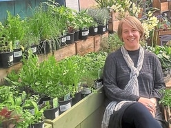 What it's like to be a herbalist: Herbs can heal – I'm the proof