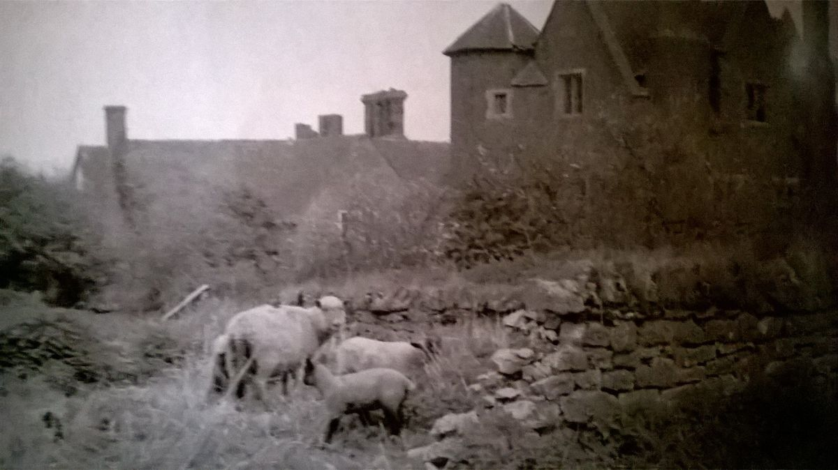 Peter Lea's photograph of Upton Cressett in the late 1960s, when he was planning to turn it into a 'commune of artisans'.