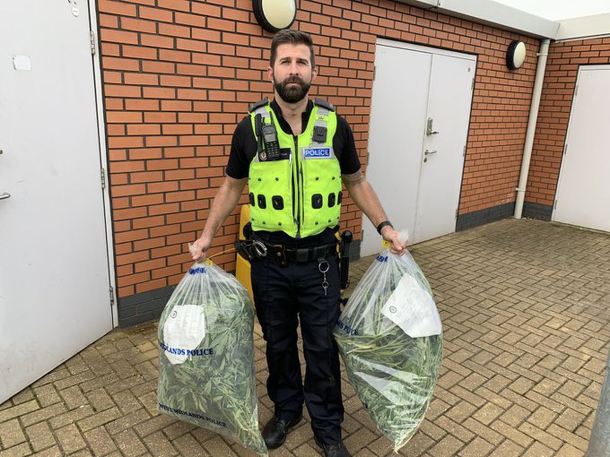 An officer holding the cannabis. Photo: Tipton Town Police