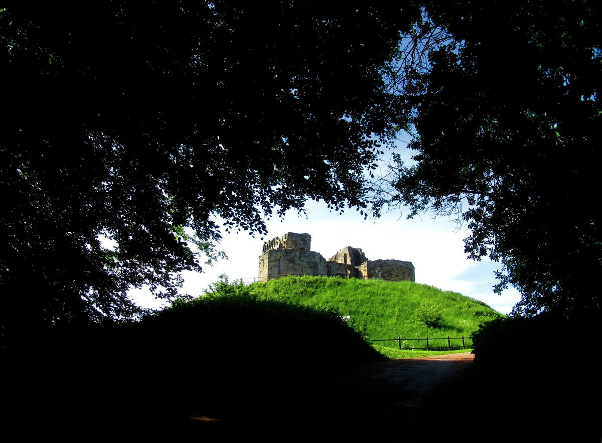 Stafford Castle through the trees by Kim Moore
