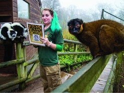 Dudley Zoo keepers are hitting the books