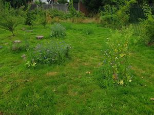 The meadow near Curborough Community Centre.