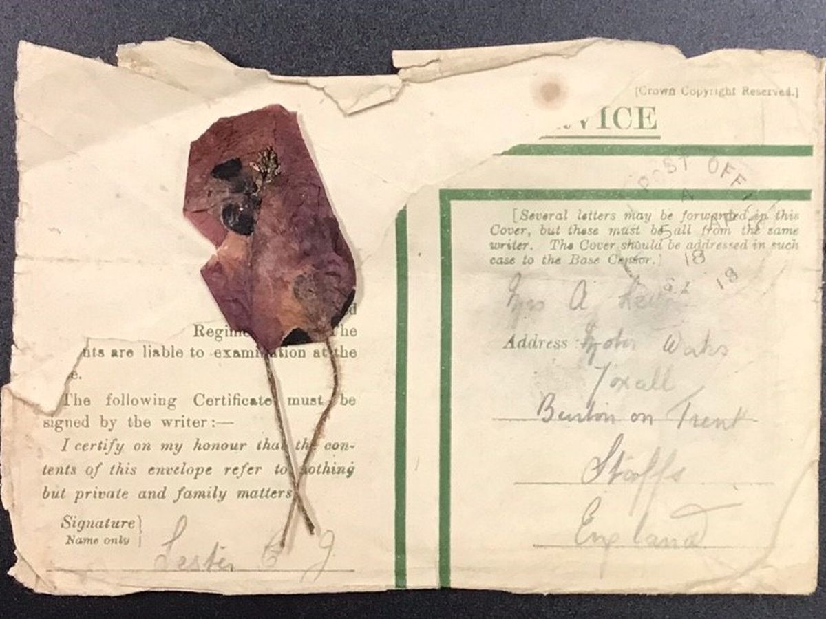 The poppy, picked by James's brother Christopher, which is now up for auction