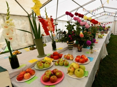 Eccleshall Show moves online
