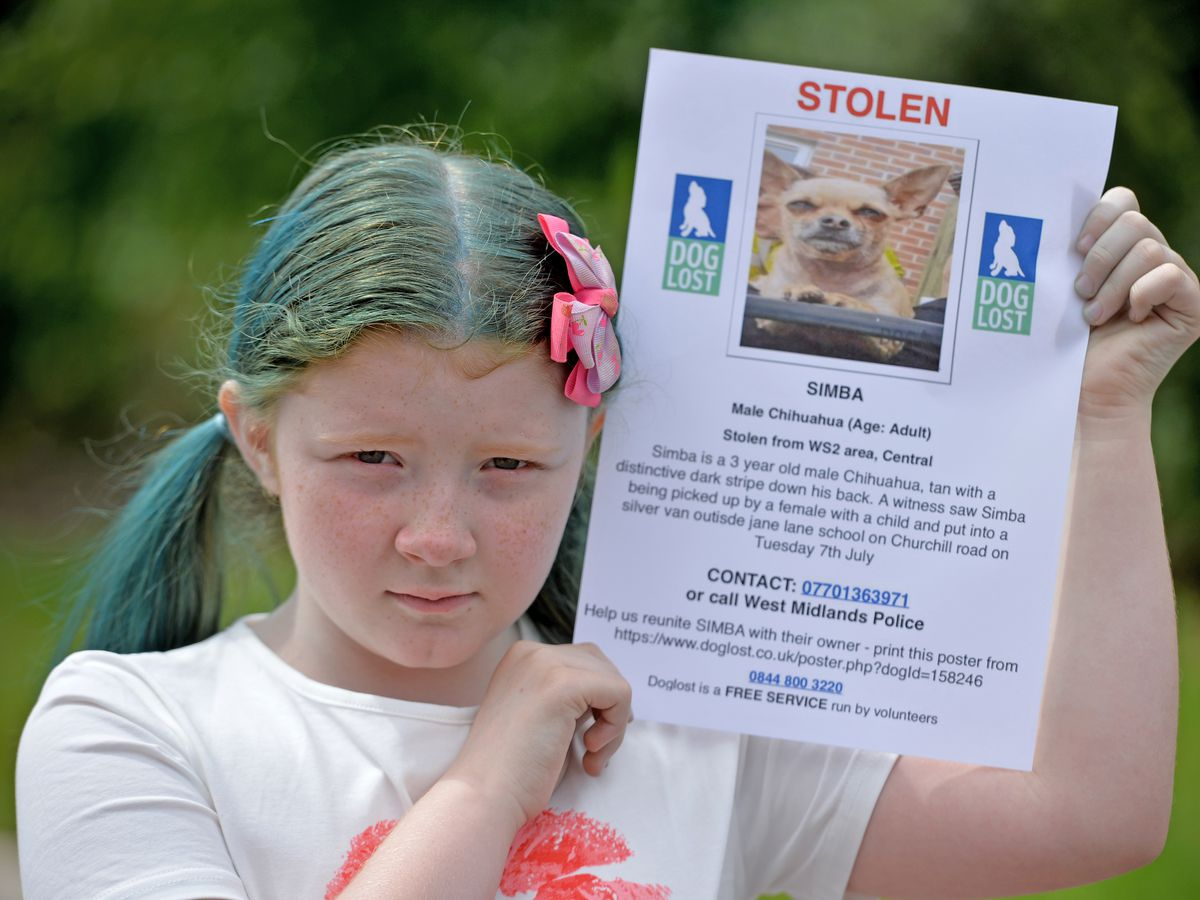 A mother is appealing for thieves to return her daughter's stolen therapy dog, daughter Summer age 9