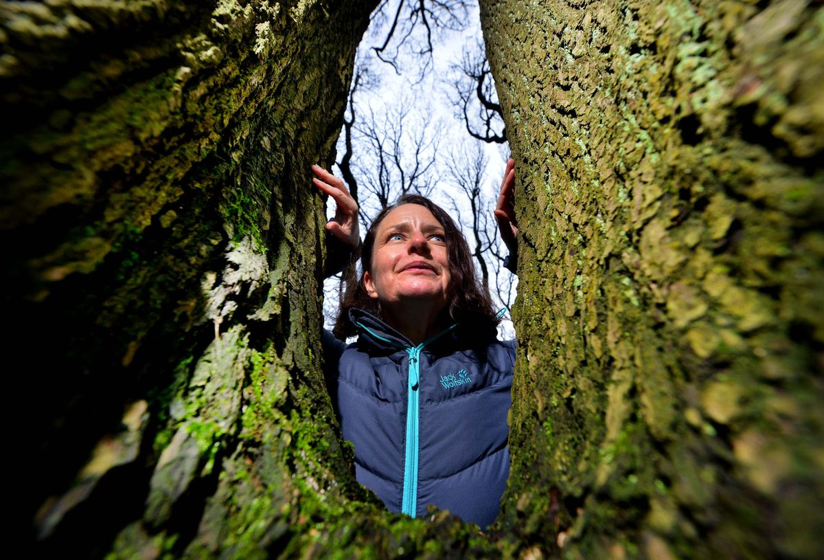 Warley Woods Community Trust has started a campaign for people to adopt a tree to help the charity continue to run. Manager Viv Cole poses with one of the many trees on the site