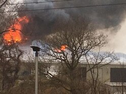 Chester Zoo evacuated after fire tears through Monsoon Forest roof
