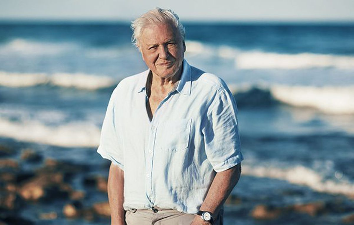 Sir David Attenborough used his Blue Planet II series  to urge us to understand the shared responsibility we all have to care for the natural world.