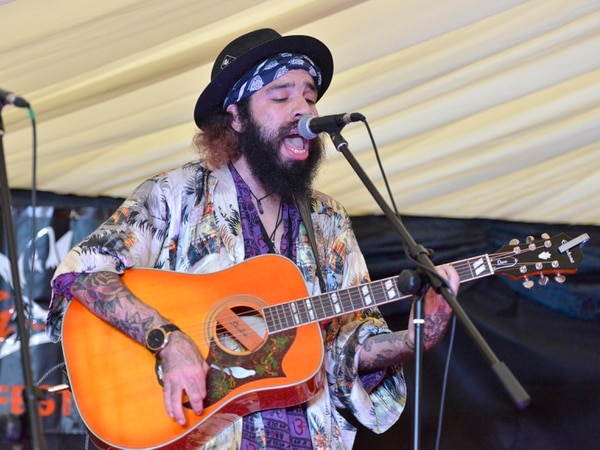 Hundreds turn out for WolvesFest - in pictures