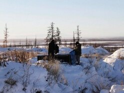 World's permafrost 'getting warmer'
