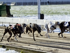 Perry Barr greyhound stadium acquired