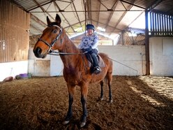 Disabled rider wants to see beloved ex-race horse Grouch recognised