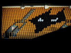 Wolves into virtual semi-finals of FIFA 20 QuaranTeam tournament