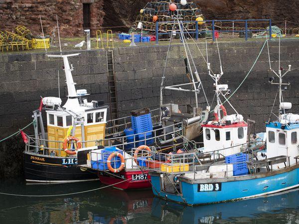 Brexit – Scottish fishing