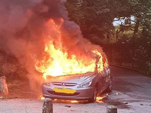 The car on fire. Photo: Dudley Fire Station