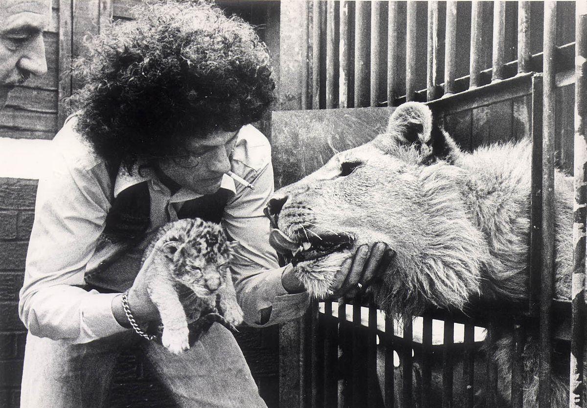 Lew Foley kept big cats in the garden of his house in Cradley Heath