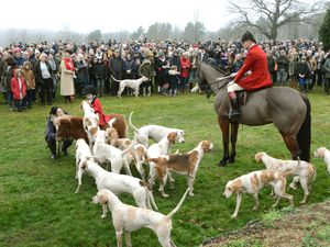 The Albrighton and Woodland Hunt traditionally sets off from the grounds of Hagley Hall each year