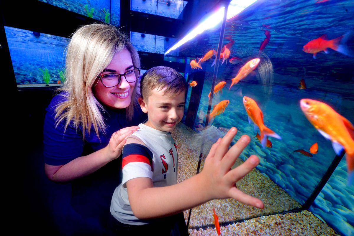 Five-year-old Harley Dixon and staff member Hannah Dixon look at the goldfish.