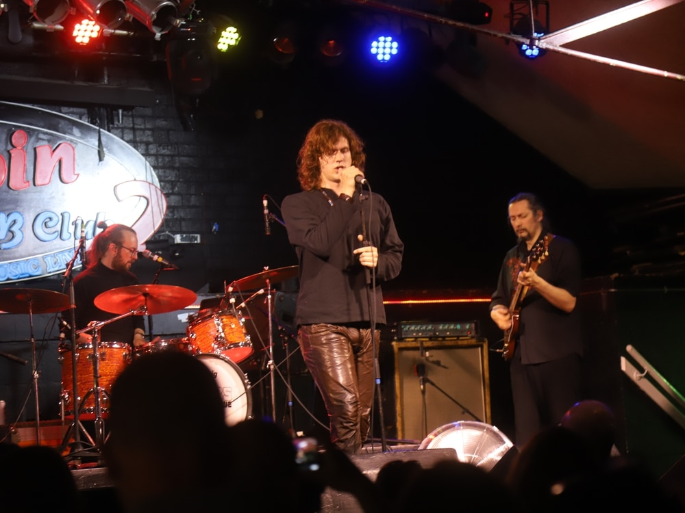 The Doors Alive, Robin 2, Bilston - review with pictures