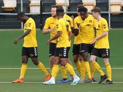Rushall Olympic 6 Leiston 0 - Report and pictures