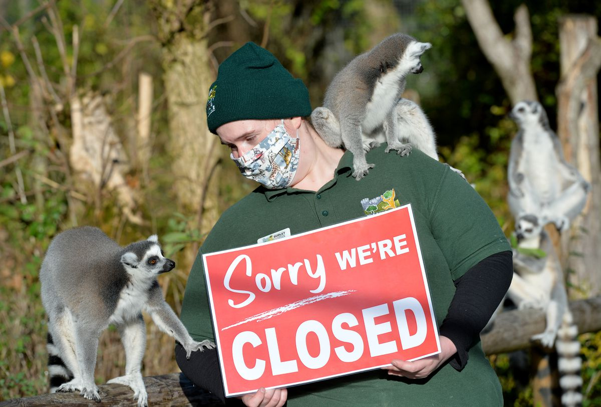 Zookeeper Laura Partridge has sad news for the lemurs