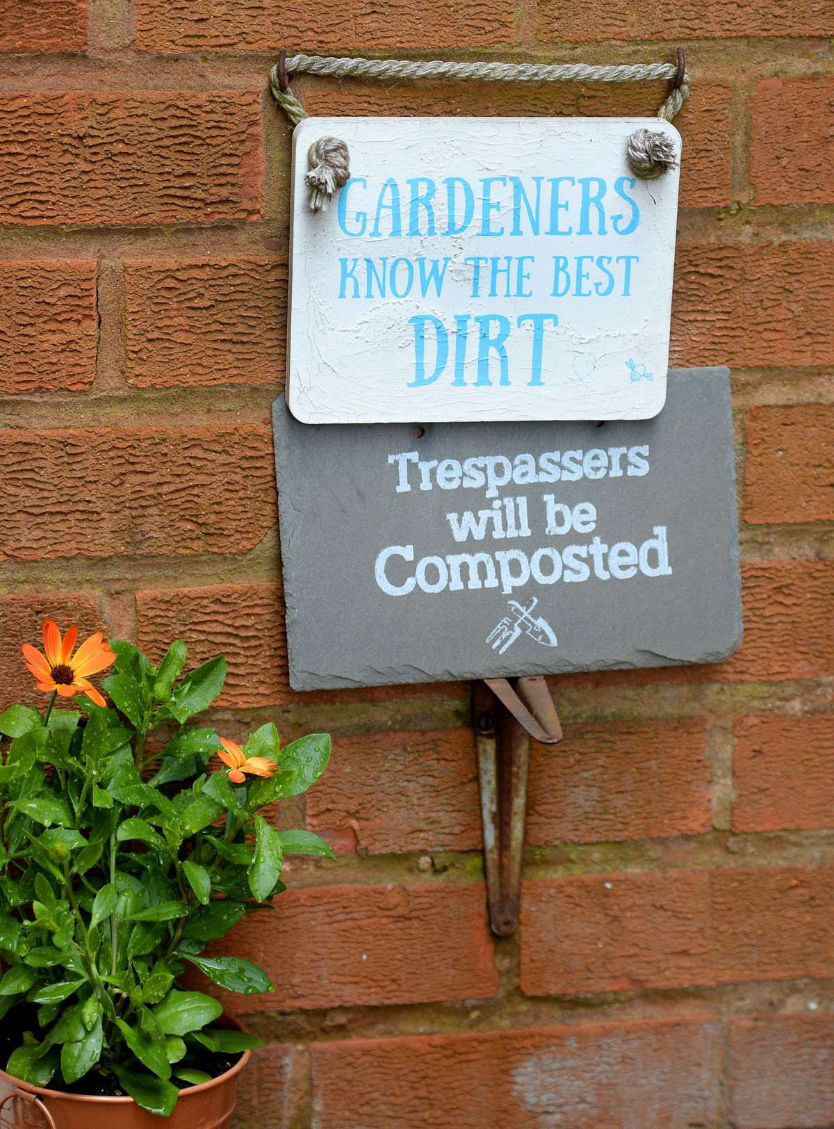 Mick says he takes a 'common sense' approach to gardening