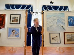 Stafford Art Group launches new exhibition - in pictures