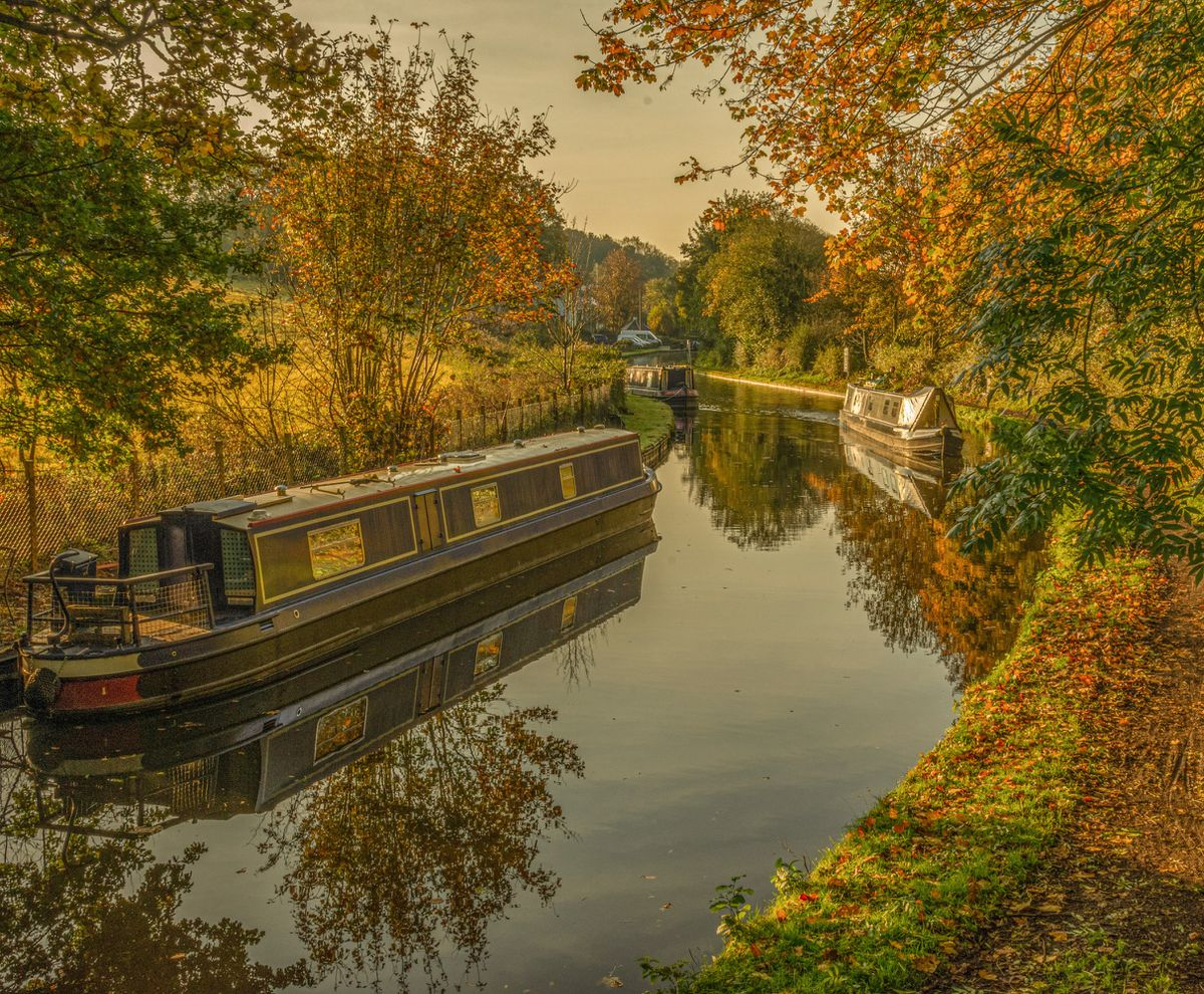 Paul Smith snapped this autumnal scene in Stourton, Staffordshire