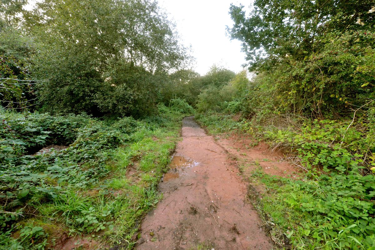 The transit site could be created on land off Gorsebrook Road