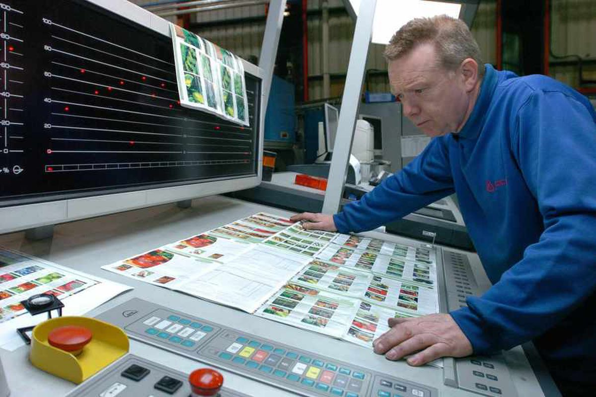 Ladder for the Black Country apprenticeships are bang on target for football fans