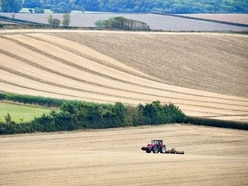'Earthy language' included in report on Brexit's rural impact