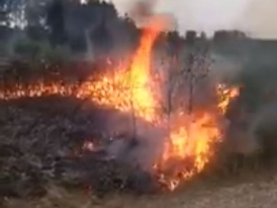 Arsonists using fireworks spark grassland blazes on Cannock Chase - WATCH