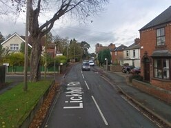 Dog attack in street sparks police appeal