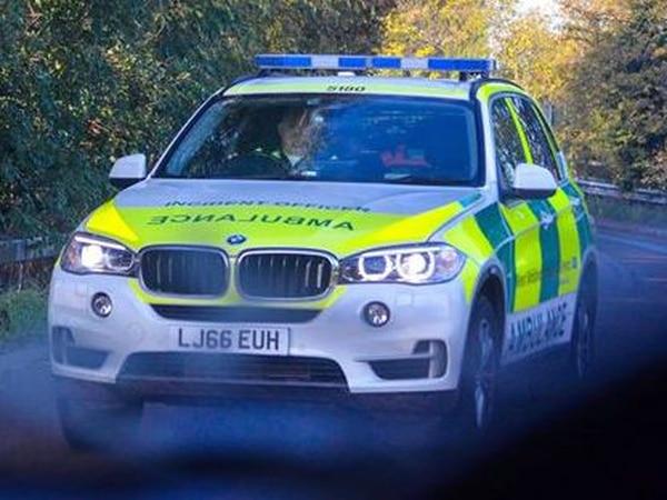 Woman suffers minor injuries in fall from M6 bridge