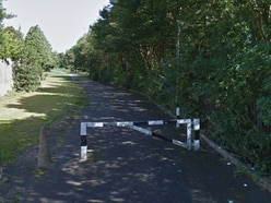 Flasher exposes himself in front of children in park