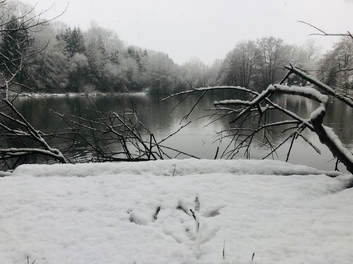 """Nordley Pools, Bridgnorth. Karen Moss says: """"As Aussies who relocated to the UK not long before Covid kicked in and having only seen snow once in about 30 odd years this was pretty awesome."""""""