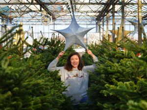 Canalside Farm co-owner Anna Barton is ready for their Magical Winter Forest event
