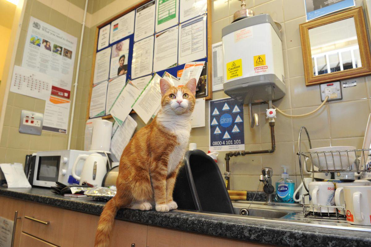 George manning the desk at Stourbridge Junction station