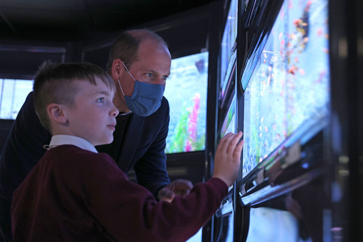 The Duke of Cambridge views the community aquarium Photo: Adrian Dennis/PA Wire