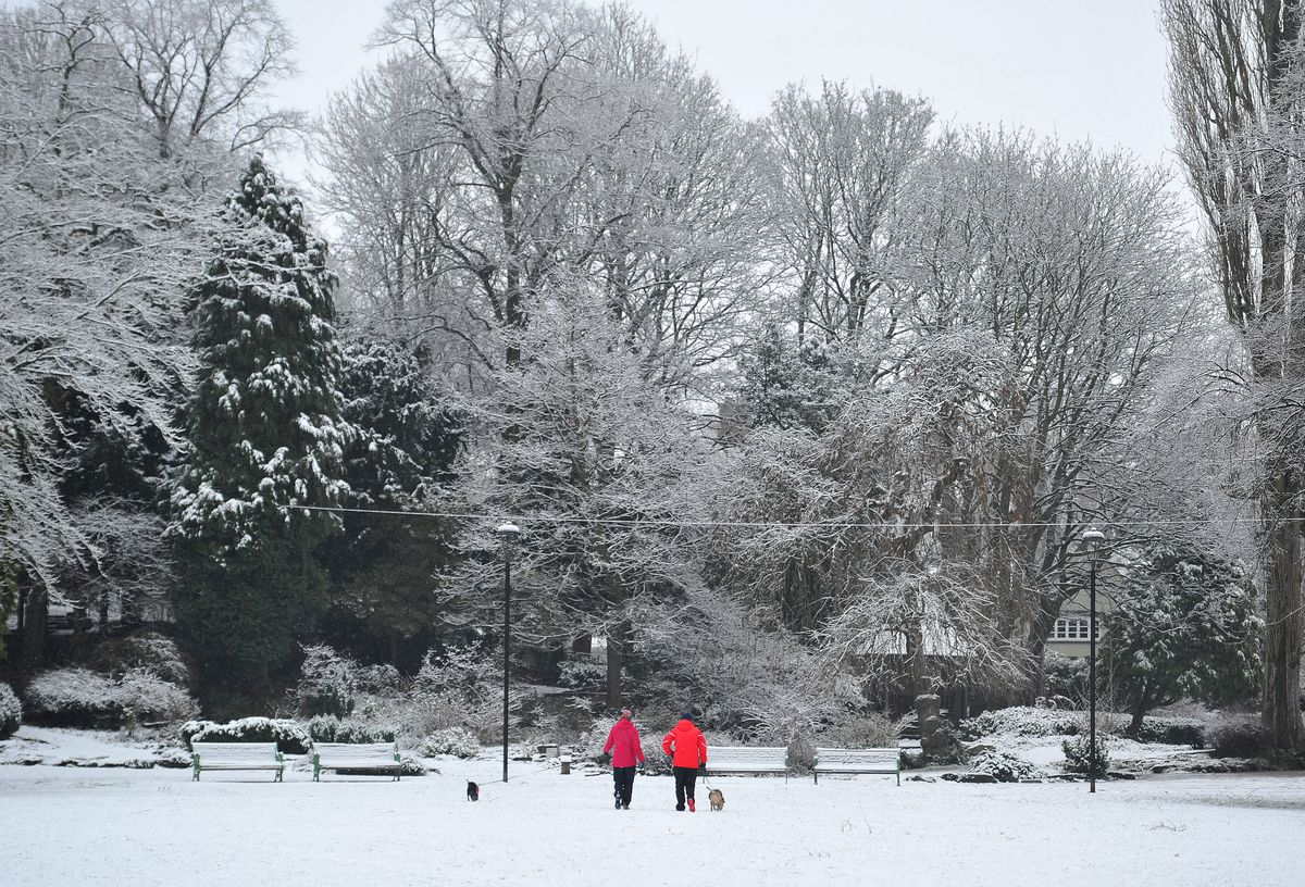 A winter wonderland around Walsall Arboretum
