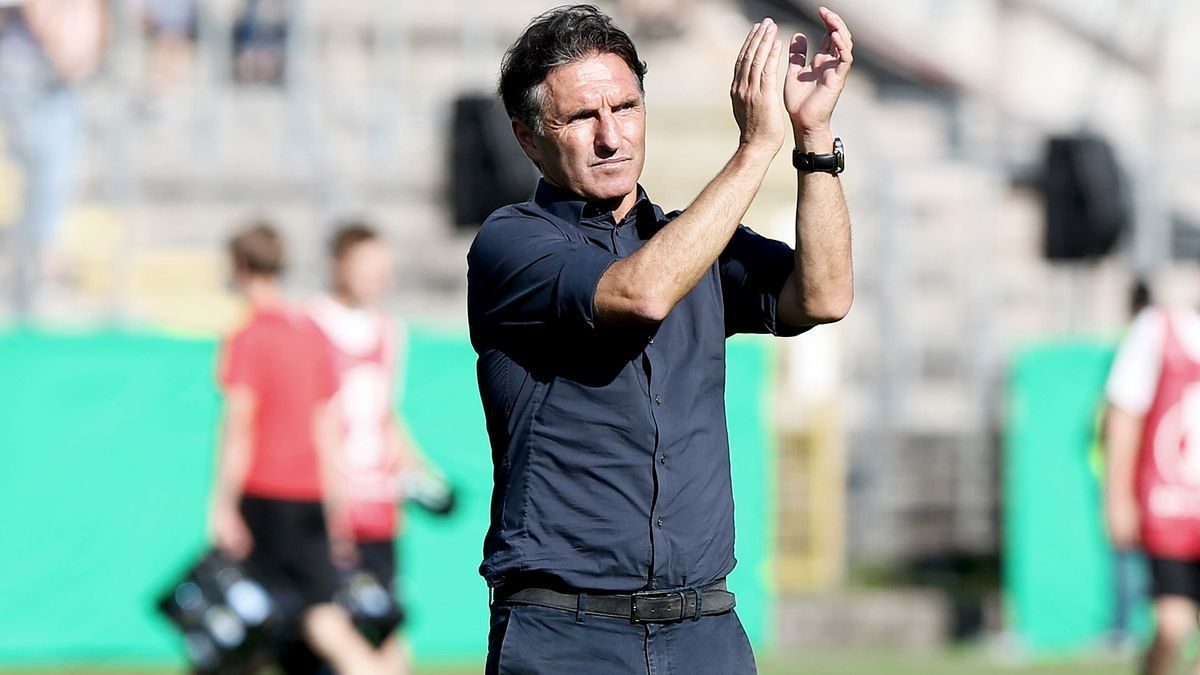 Bruno Labbadia has met Dowling this week. Photo: Wolfsburg