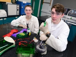 Young scientist exhibition to go virtual amid pandemic