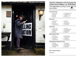European elections: When, where and how to vote and other questions answered
