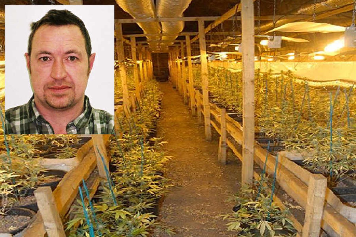 Drakelow Tunnels caretaker jailed after ex-nuclear bunker used as 'sophisticated' cannabis factory