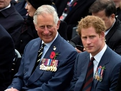 Charles and Harry to join discussion on youth violent crime